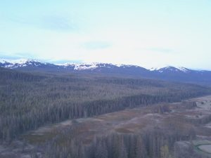 Aerial drone shot of forests and mountains all around Bear Track Inn