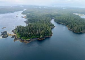 Long reaching aerial drone shot that shows all the winding shorelines along this area of Alaska