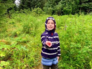Child showing berries in their palm that they just gathered from the surrounding undergrowth