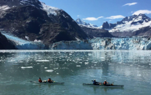 Two double-person kayaks float in Glacier Bay in front of a large glacier and snow capped mountains