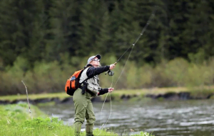 Action shot of a woman fly fishing at the edge of a stream